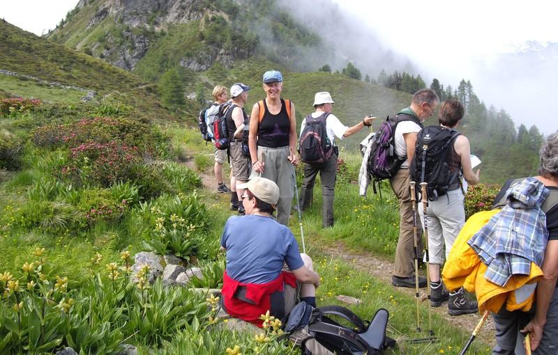 AlpenFieber-Jass-und-Wanderwoche.jpg